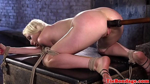 Bdsm, Tied, Tied anal, Bdsm anal, Anal fingering