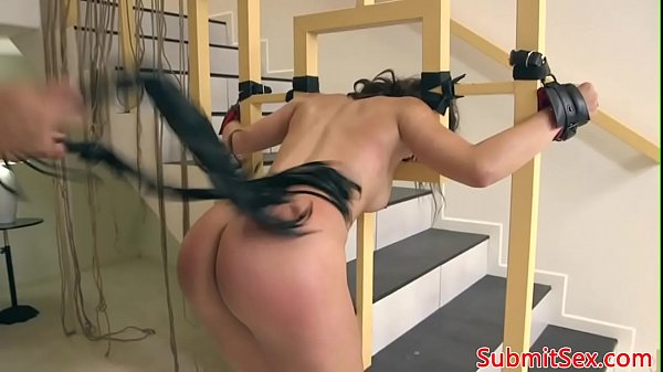 Pussy whipping, Whipping, Whip